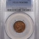 CAC Approved Coins 1904 INDIAN CENT – PCGS MS-64 BN