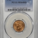 Indian 1895 INDIAN CENT PCGS MS-64 RB PREMIUM QUALITY++